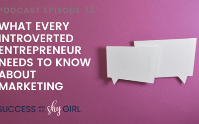 Episode 32 – What every introverted entrepreneur needs to know about marketing